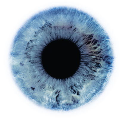 A pupil and blue iris on a white background