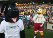Jet on the field at the Mix 94.5 Grand Mascot Race for Telethon